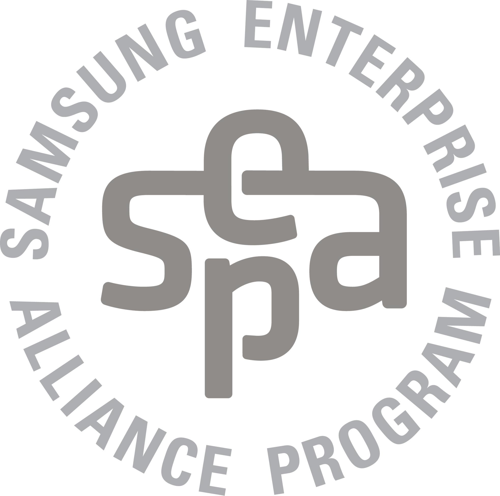SEAP_Silver Partner EMBLEM